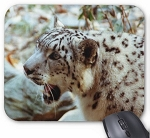 Snow Leopard Growl Mouse Pad