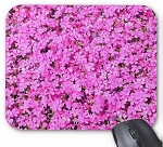 Mountain Pinks Flowers Mouse Pad