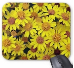 Daisy Flowers Mouse Pad