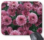 Purple Flowers Mouse Pad