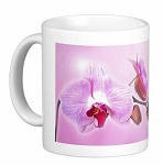 Mug - Butterfly and Orchid Pink