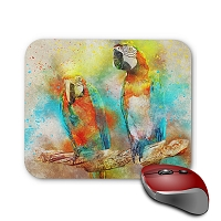 Mouse Pad - Pair of Rainbow Lorie 2