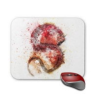 Fantasy Mouse Pad - Red Abstract Dragon