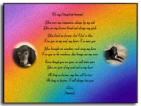 Custom Rainbow Forever Pet Wall Plaque Rainbow Background