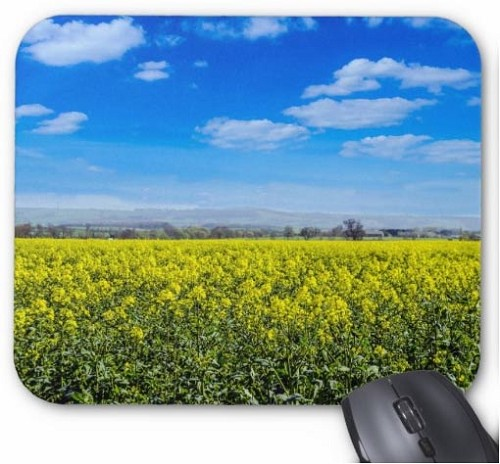 Field of Flowers Mouse Pad