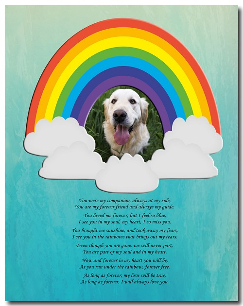 Custom Forever Pet (Rainbow Cloud)