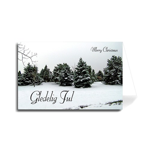 Greeting Cards | Holiday | Christmas | Made in USA