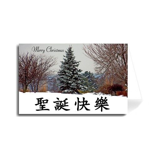 Chinese Merry Christmas Greeting Card - Colorful Tree in Snow