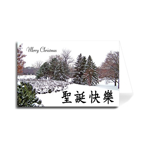 Chinese Merry Christmas Greeting Card - Colorful Trees Snowy in Park