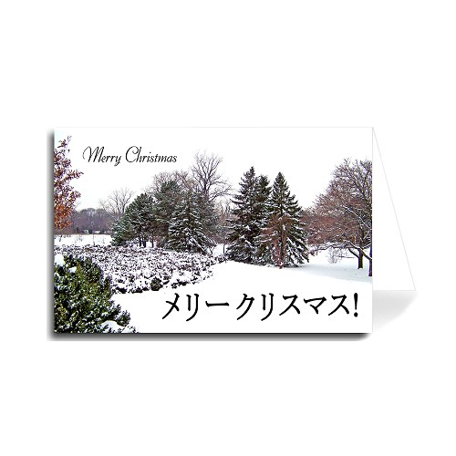 Japanese Merry Christmas Greeting Card - Colorful Trees Snowy in Park