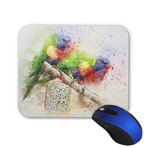 Mouse Pad - Pair of Rainbow Lorie 1