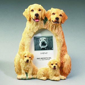 Frame - Golden Retriever