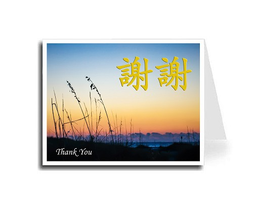 Traditional Chinese Calligraphy w/Sunset Beach Thank You Card Set - Xie Xie & Thank You (Gold)