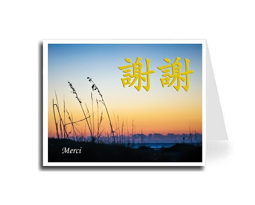 Traditional Chinese Calligraphy w/Sunset Beach Thank You Card Set - Xie Xie & Merci (Gold)