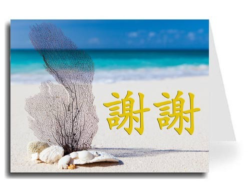 Traditional Chinese Calligraphy w/Beach Thank You Card Set - Xie Xie (Gold)