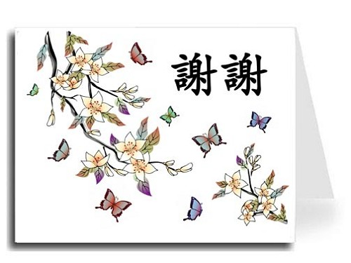 Traditional Chinese Calligraphy w/Elegant Butterflies Thank You Card Set - Xie Xie (Black)