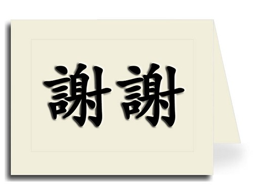 Traditional Chinese Calligraphy Thank You Card Set - Xie Xie (Black Shadow)
