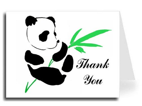 Panda Watercolor Thank You Card Set - Iris Font