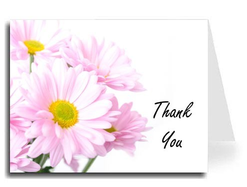 Pink Daisies Thank You Card Set - Freestyle Script Font