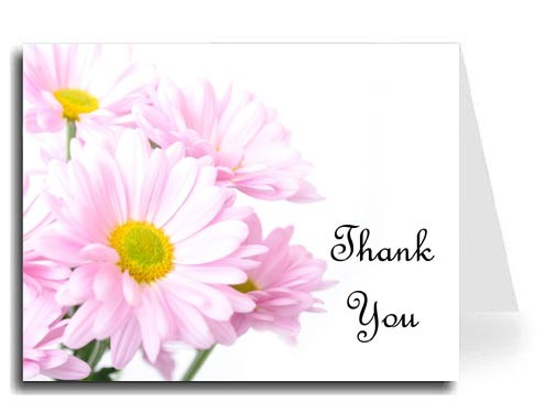 Pink Daisies Thank You Card Set - French Script MT Font