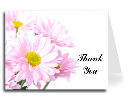 Pink Daisies Thank You Card Set - Iris Font