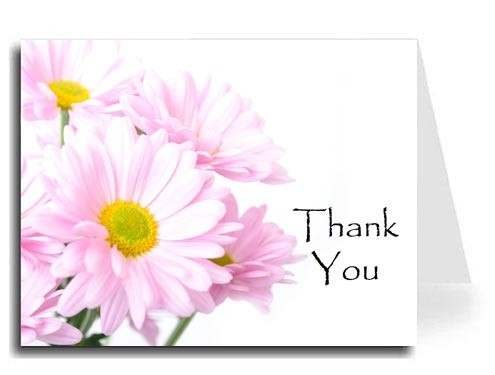 Pink Daisies Thank You Card Set - Papyrus Font