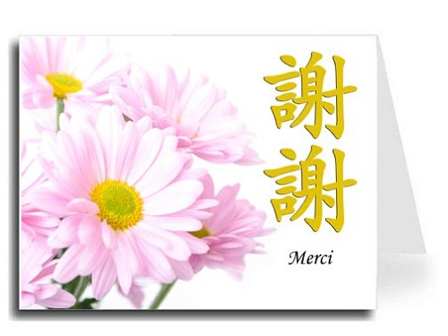 Traditional Chinese Calligraphy w/Pink Daisies Thank You Card Set - Xie Xie & Merci (Gold)