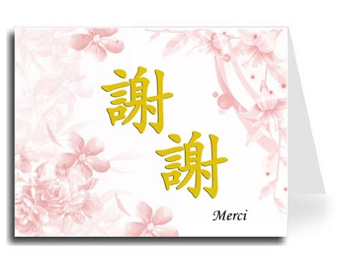 Traditional Chinese Calligraphy w/Pink Floral Thank You Card Set - Xie Xie & Merci (Gold)