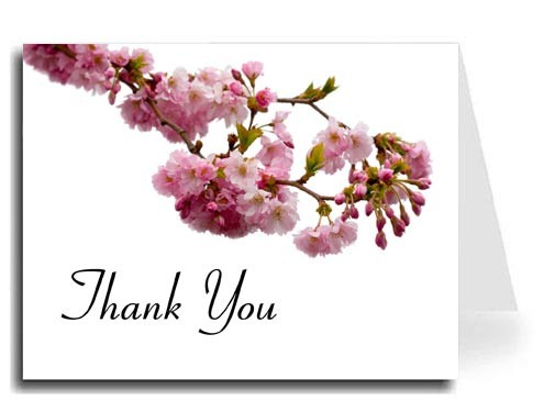 Pink Blossoms Thank You Card Set - Connecticut Font