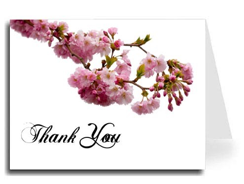 Pink Blossoms Thank You Card Set - ABIGAL Font
