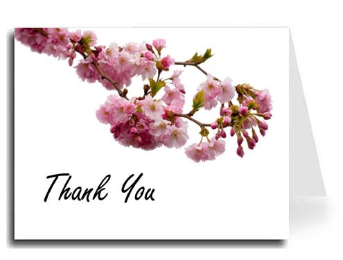 Pink Blossoms Thank You Card Set - Freestyle Script Font