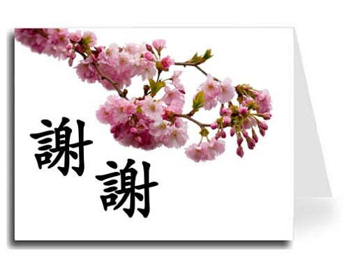 Traditional Chinese Calligraphy w/Pink Blossoms Thank You Card Set - Xie Xie (Black)