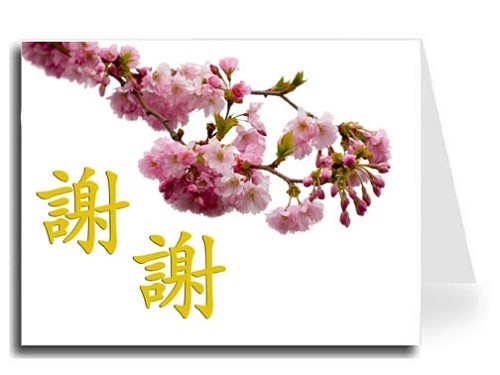 Traditional Chinese Calligraphy w/Pink Blossoms Thank You Card Set - Xie Xie (Gold)