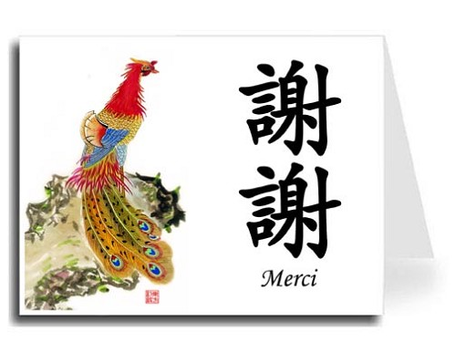 Traditional Chinese Calligraphy w/Peacock Thank You Card Set - Xie Xie & Merci (Black)