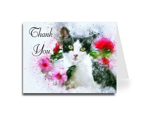 Thank You Card - Black White Cat